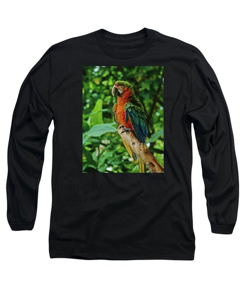 Long Sleeve T-Shirt featuring the photograph Don't Ruffle My Feathers by Marie Hicks