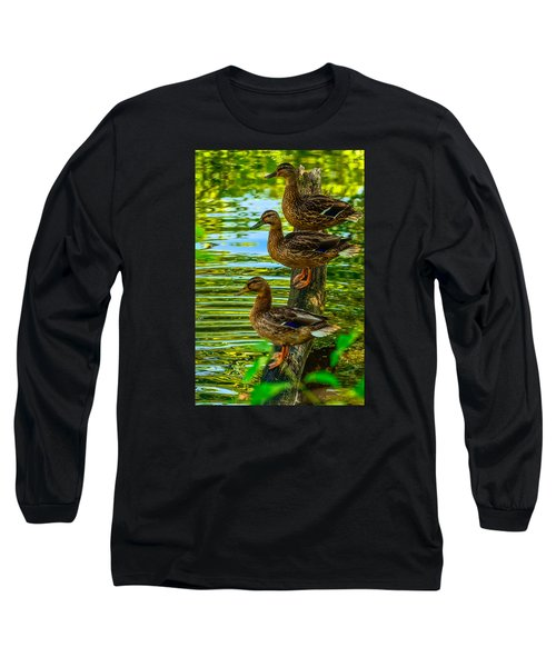 Ducks On A Log 3 Long Sleeve T-Shirt by Brian Stevens