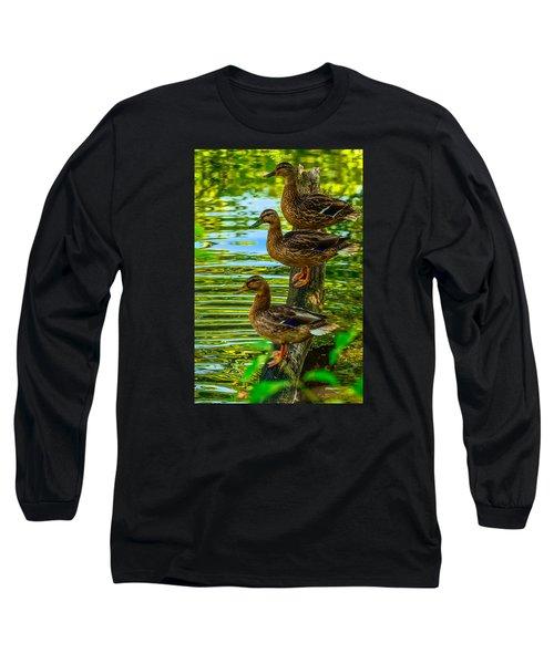Ducks On A Log 3 Long Sleeve T-Shirt