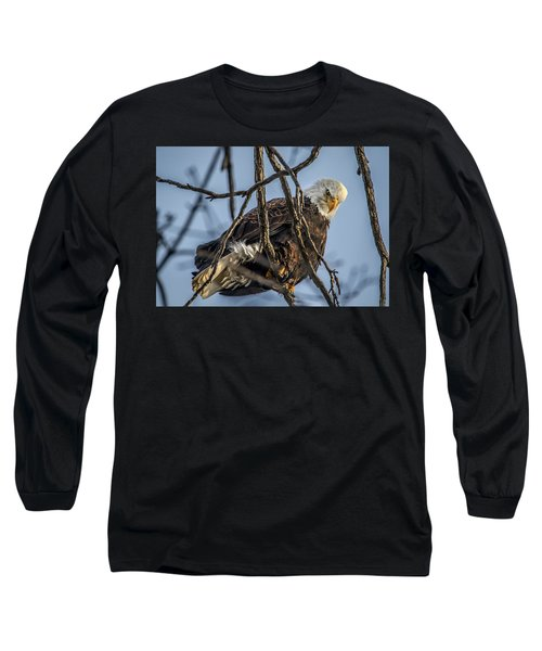 Eagle Power Long Sleeve T-Shirt by Ray Congrove