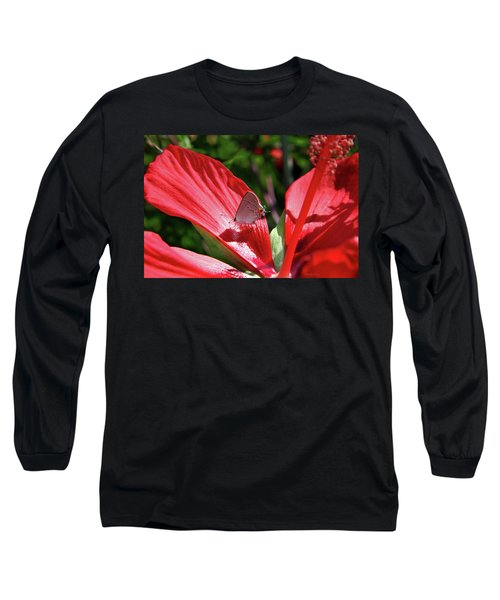 Eastern Tailed Blue Butterfly On Red Flower Long Sleeve T-Shirt by Inspirational Photo Creations Audrey Woods