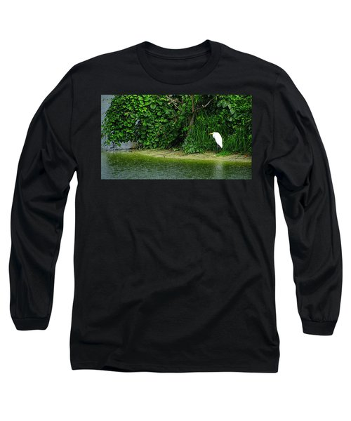 Egret Wakodahatchee Florida Wetlands Long Sleeve T-Shirt