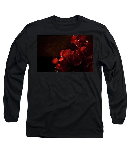 elaD Long Sleeve T-Shirt