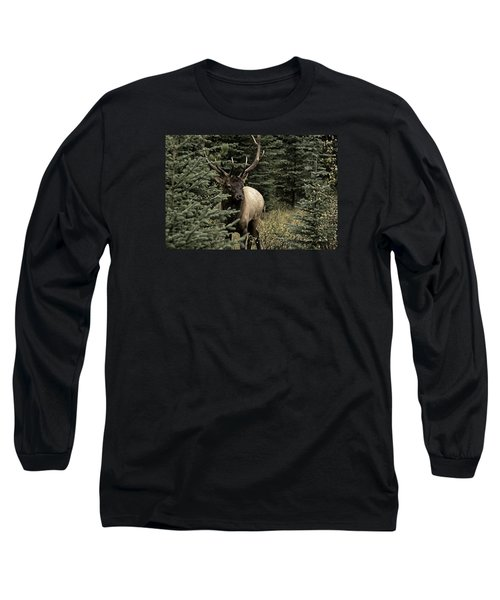 Elk Bull Long Sleeve T-Shirt