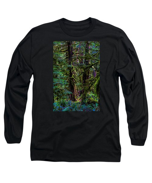 Enchanted Long Sleeve T-Shirt by Alana Thrower