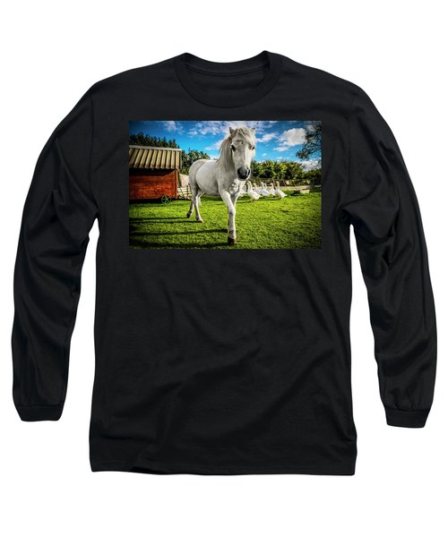 English Gypsy Horse Long Sleeve T-Shirt