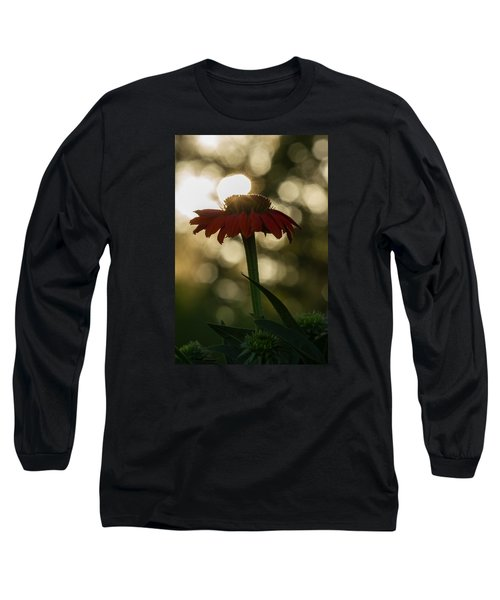 Evening Elegance Long Sleeve T-Shirt by Penny Meyers