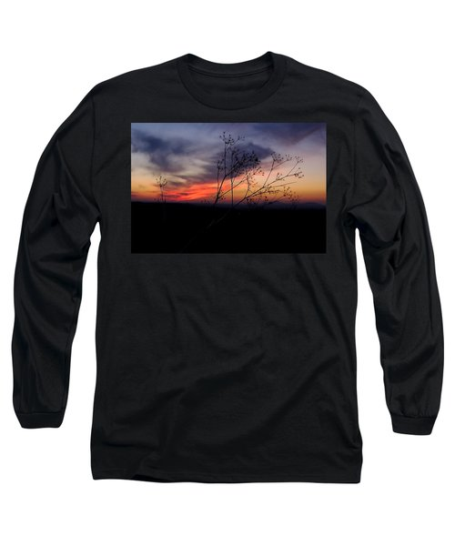 Evening Light Over Meadow Long Sleeve T-Shirt