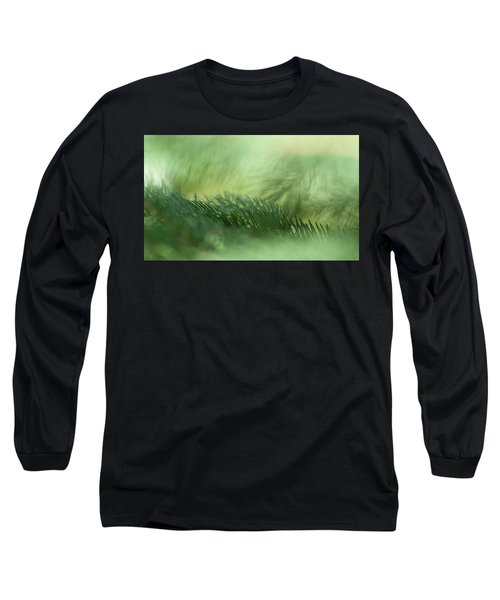 Long Sleeve T-Shirt featuring the photograph Evergreen Mist by Ann Lauwers