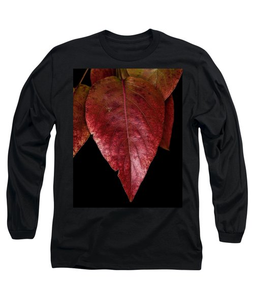 Long Sleeve T-Shirt featuring the photograph Fall Colors 3 by James Sage