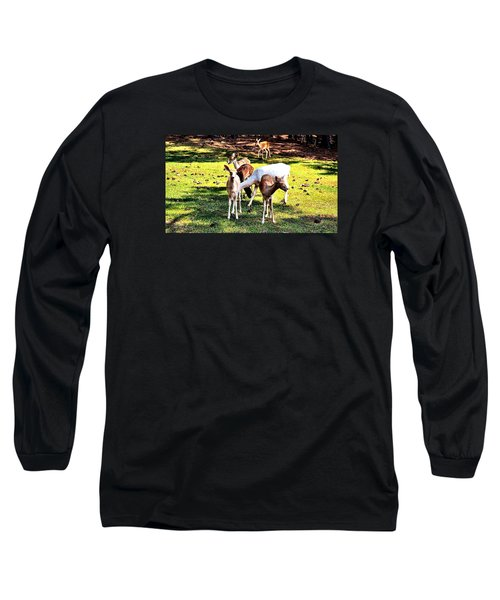 Family Of Deer Long Sleeve T-Shirt by James Potts