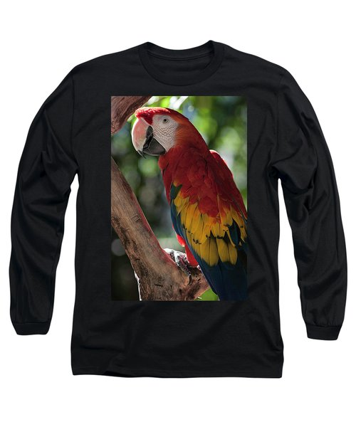 Feathered Rainbow Long Sleeve T-Shirt