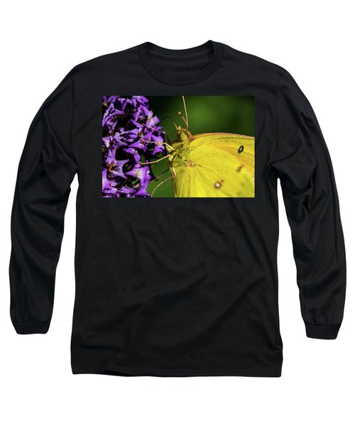 Long Sleeve T-Shirt featuring the photograph Feeding Butterfly by Jay Stockhaus
