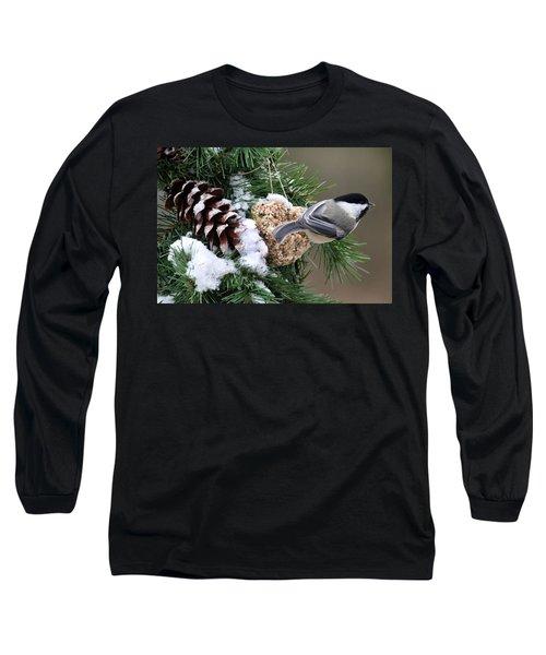 Feeding Feathered Friends Long Sleeve T-Shirt