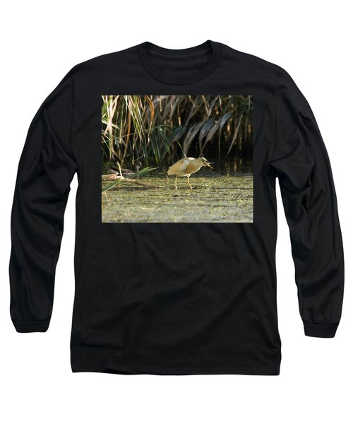 Feeding Squacco Heron Long Sleeve T-Shirt