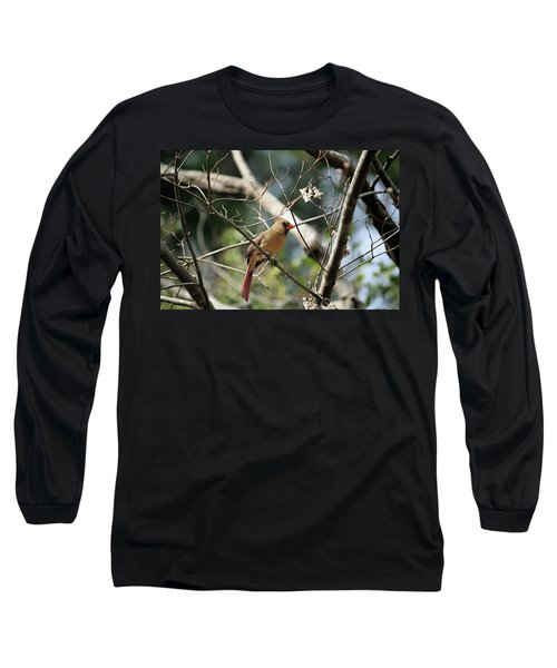 Long Sleeve T-Shirt featuring the photograph Female Cardinal by Cathy Harper