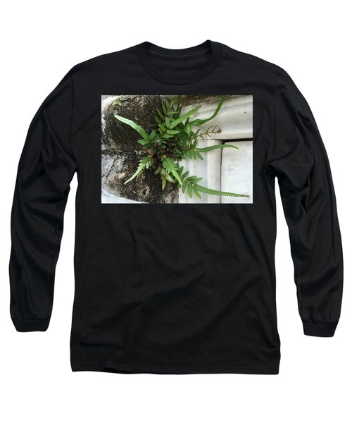 Fern Long Sleeve T-Shirt