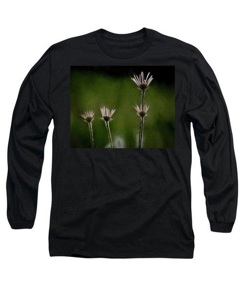 Field Of Flowers 4 Long Sleeve T-Shirt