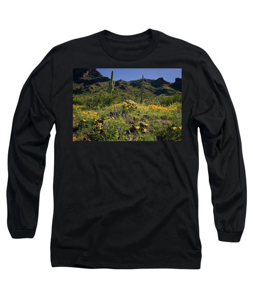 Fields Of Glory Long Sleeve T-Shirt by Lucinda Walter