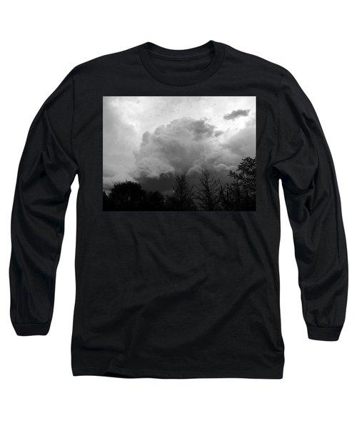 Fierce  Long Sleeve T-Shirt by Teresa Schomig