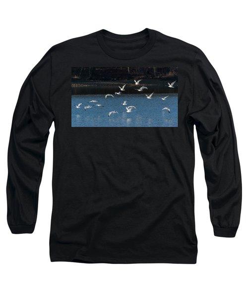 Flock Of Them Long Sleeve T-Shirt