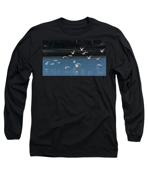 Flock Of Them Long Sleeve T-Shirt