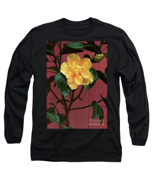 flower photographs - Yellow Rose Long Sleeve T-Shirt