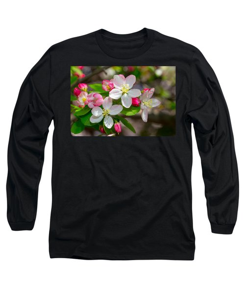 Flowering Cherry Tree Blossoms Long Sleeve T-Shirt