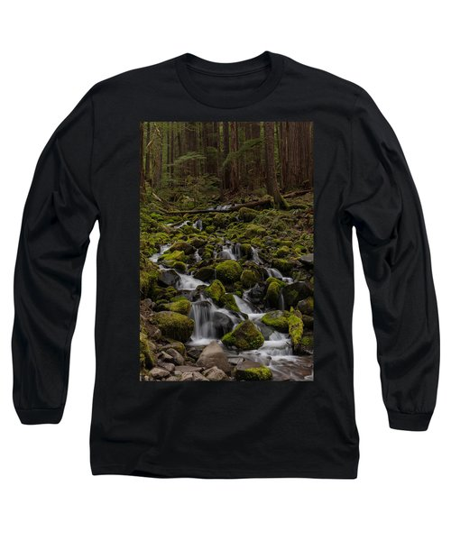Forest Cathederal Long Sleeve T-Shirt