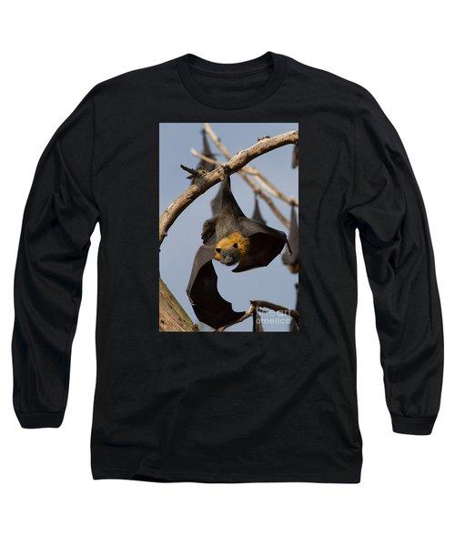 Fruit Bat Hanging Long Sleeve T-Shirt