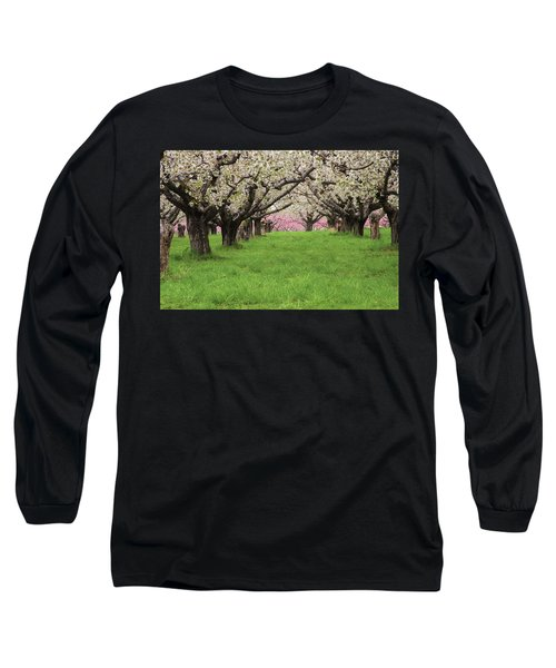 Fruit Orchard Long Sleeve T-Shirt by Utah Images