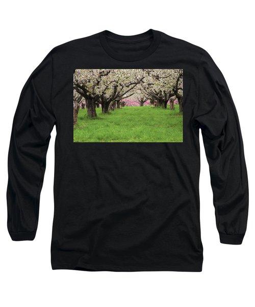 Fruit Orchard Long Sleeve T-Shirt