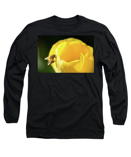Long Sleeve T-Shirt featuring the photograph Fuzzy Pollen by Brian Hale