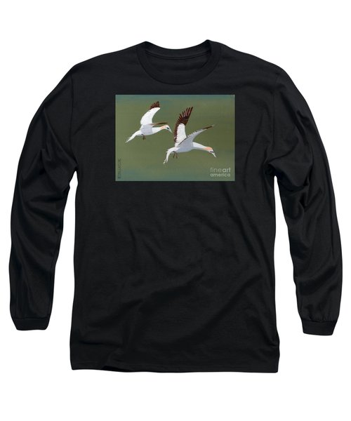 Gannets - Painting Long Sleeve T-Shirt by Veronica Rickard