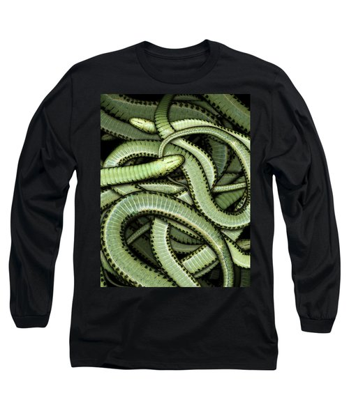 Garter Snakes Pattern Long Sleeve T-Shirt by James Larkin