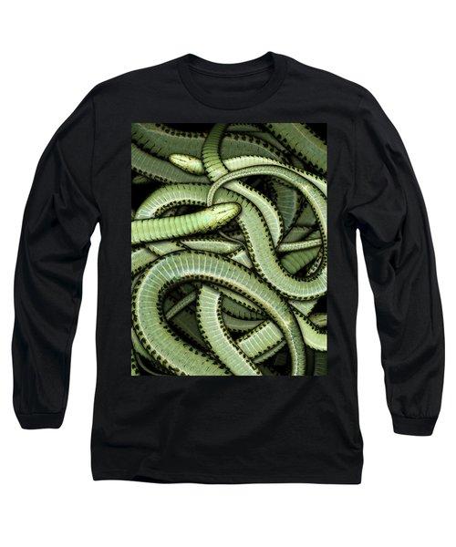 Garter Snakes Pattern Long Sleeve T-Shirt