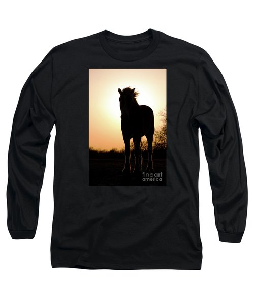 Gentlest Giant Long Sleeve T-Shirt