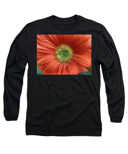 Gerber Daisy Long Sleeve T-Shirt by Geraldine Alexander