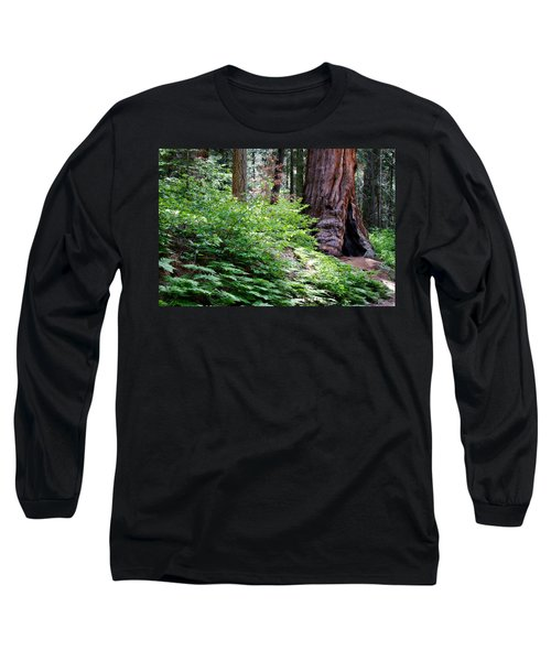 Long Sleeve T-Shirt featuring the photograph Giant Among The Forest by Lana Trussell