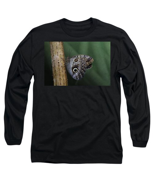 Giant Owl Butterfly On Screw Pine Long Sleeve T-Shirt