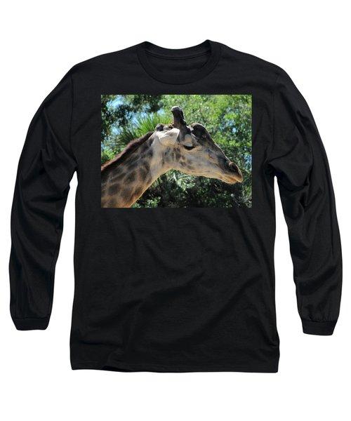 Giraffe  Long Sleeve T-Shirt by Chris Mercer