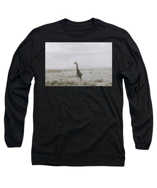 Giraffe Long Sleeve T-Shirt by Shaun Higson