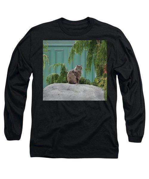 Glorious Cat Long Sleeve T-Shirt
