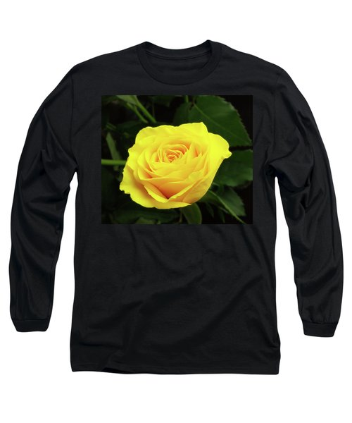 Glorious Yellow Rose Long Sleeve T-Shirt