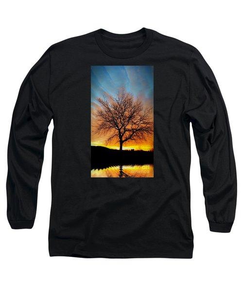 Golden Reflection Long Sleeve T-Shirt by Dan Stone