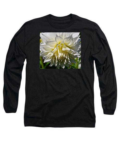 Graceful Dahlia  Long Sleeve T-Shirt