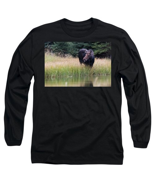 Grand Teton Moose Long Sleeve T-Shirt