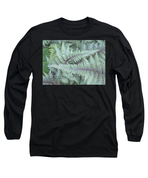 Grateful Long Sleeve T-Shirt by Catherine Alfidi