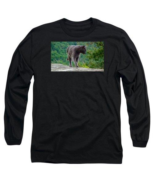 Gray Cat Stalking Long Sleeve T-Shirt
