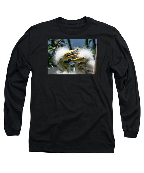 Long Sleeve T-Shirt featuring the photograph Great Egret Chicks by Brian Tarr